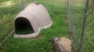 Goat igloo and rock