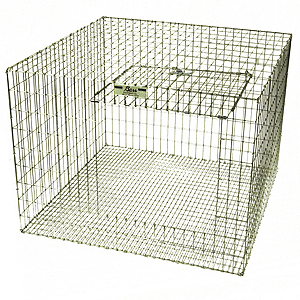 Bass Equipment Rabbit Cage
